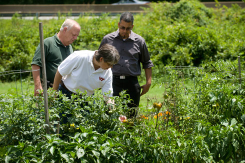 From left, Horticulture Technician Teddy Martin, Extension Agent Lisa Sanderson and Gardens Growing Families participant Angelo Wright check over plants growing in Wright's plot.
